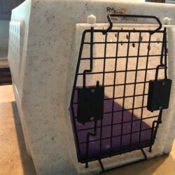 primo pad in rough tough kennel.