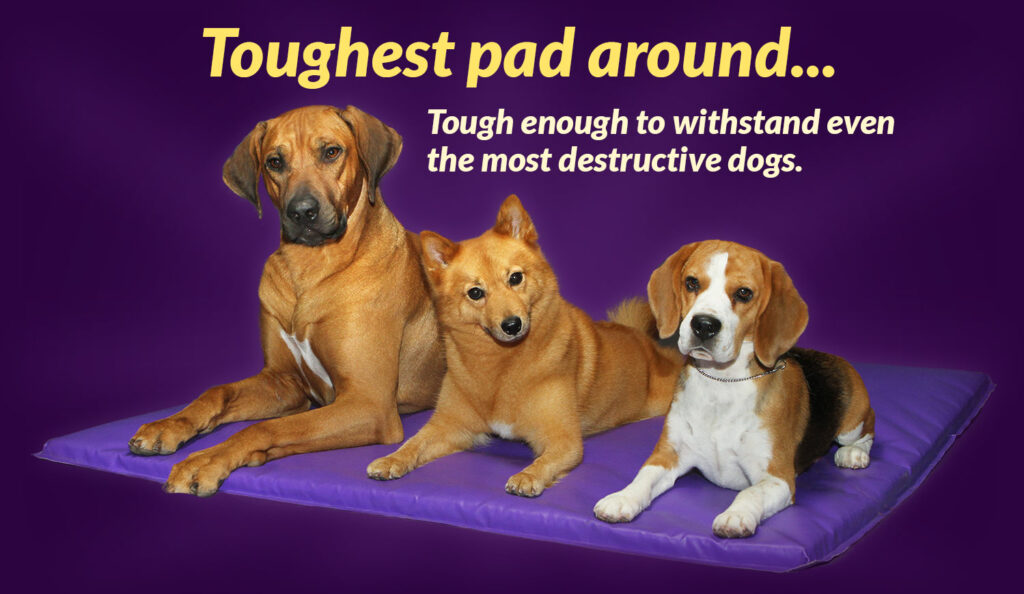 Toughtest Pad around... The enough to withsand even the most destructive  dogs.